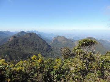 CMS/COP13: Espécies migratórias conectam o planeta