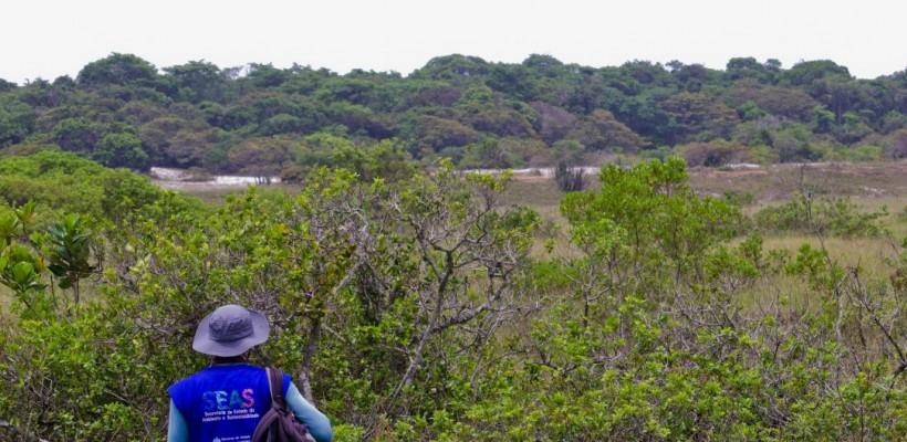 Expedição de campo no Rio de Janeiro coleta possíveis espécies endêmicas
