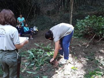 PAN Flora Endêmica do RJ realiza ações de prevenção de espécies exóticas invasoras