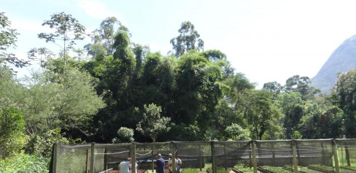 Equipe do PAN Flora Endêmica do RJ realiza diversas ações no Território Vale do Paraíba