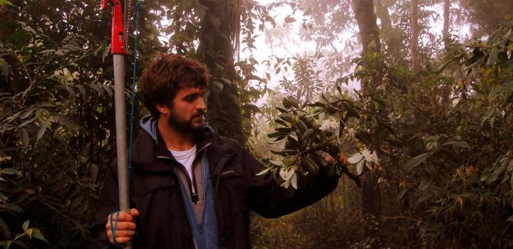 Especialistas do JBRJ serão capacitados como avaliadores de risco pela IUCN